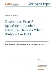 Diversify or Focus? Spending to Combat Infectious Diseases When Budgets are Tight