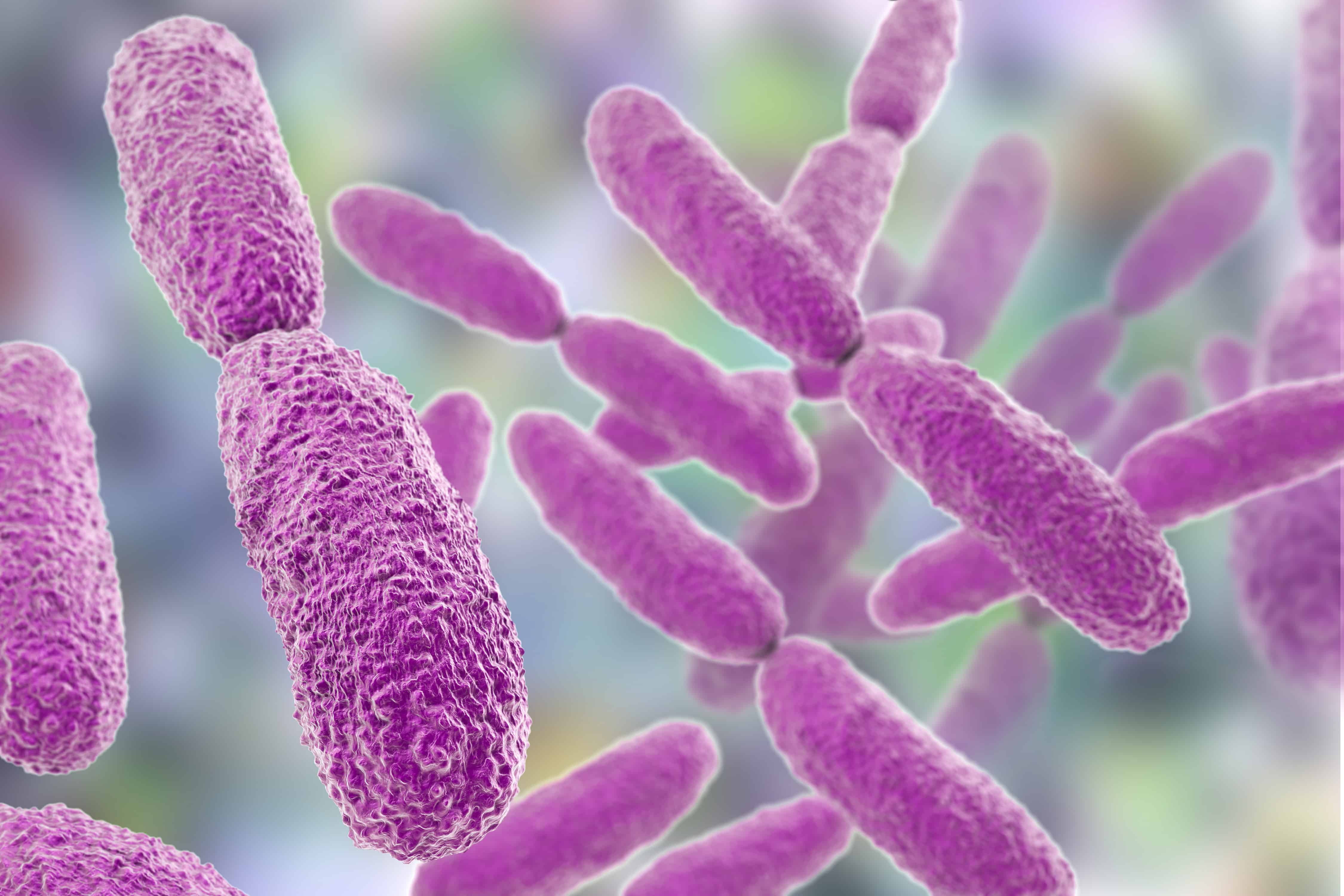 Weekly Digest: Multiple cases of colistin-resistant Klebsiella identified in Indian hospital; Wild poliovirus type 3 eradicated worldwide; New guideline recommends against using antibiotics for toothaches.